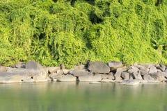 Gestalten Sie mit Stein und einem Fluss in der Front landschaftlich stockfoto