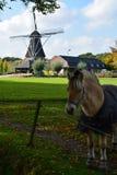 Gestalten Sie mit traditioneller niederländischer Kornwindmühle und -pferd landschaftlich Stockfotografie