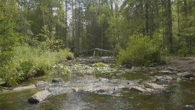 Gestalten Sie mit Wald und einem Fluss in der Front landschaftlich Schöne Landschaft Fluss im Wald Lizenzfreies Stockfoto