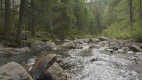 Gestalten Sie mit Wald und einem Fluss in der Front landschaftlich Schöne Landschaft Fluss im Wald Stockbild
