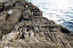 Gestalten Sie mit Wasser und Felsen in Thassos-Insel, Griechenland, nahe bei dem natürlichen Pool landschaftlich, das Giola genan Lizenzfreies Stockfoto