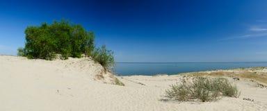 Gestalten Sie Curonian Spucken landschaftlich stockbild