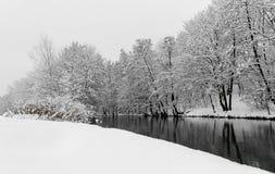 Gestalten Sie Schneeszenefluß und Bäume Nürnberg, Deutschland-Fluss Pegnitz landschaftlich Stockbild
