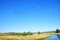 Gestalten Sie szenisches eines Geysirbeckens in Yellowstone Nationalpark landschaftlich Lizenzfreie Stockbilder