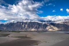Gestalten Sie um Hunder-Sanddünen in Nubra-Tal, Ladakh, Indien landschaftlich Stockfotografie