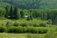 Gestalten Sie von einem Gebirgspfad einer Ranch tief im felsigen ` s landschaftlich stockfotografie