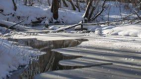Gestalten Sie Waldstromflüsse in den Winterwaldnaturschnee landschaftlich, stock video footage