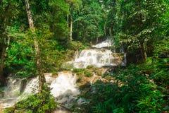 Gestalten Sie Wasserfall namtok pacharogn Nationalpark, Tak Thailand landschaftlich stockbild