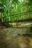 Gestalten Sie Wasserfall namtok pacharogn Nationalpark, Tak Thailand landschaftlich Stockbilder