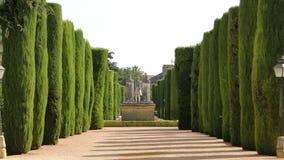 Gestaltete Bäume im Alcazargarten, Cordoba Lizenzfreie Stockbilder