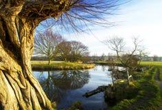 Gestaltete Fluss-Ansicht Lizenzfreie Stockbilder