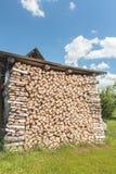 Gestapeld berk droog hout met voederbakeind Stock Foto