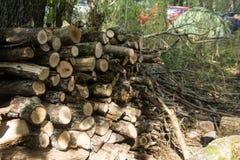 Gestapeld brandhout als achtergrond, close-up Het verwarmen van huis in de winter stock foto's