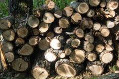 Gestapeld brandhout als achtergrond, close-up Het verwarmen van huis in de winter stock afbeeldingen