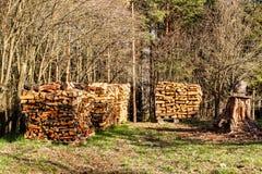 Gestapeld brandhout in de tuin Het voorbereidingen treffen voor de winter Het werk in bos de Lenteavond in de tuin stock afbeelding