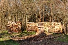 Gestapeld brandhout in de tuin Het voorbereidingen treffen voor de winter Het werk in bos de Lenteavond in de tuin royalty-vrije stock fotografie