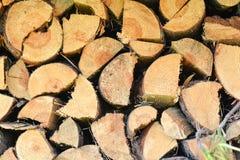 Gestapeld brandhout voor kampbranden en open haarden stock afbeelding