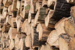 Gestapeld die brandhout op de winter wordt voorbereid stock afbeeldingen