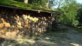 Gestapeld firewoods onder luifel stock footage