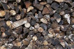 Gestapeld gemengd koord van nat en vuil brandhout Stock Foto