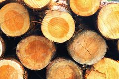 Gestapeld hout Stock Afbeelding