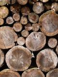 Gestapeld hout stock afbeeldingen