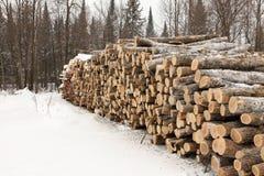 Gestapeld pulphout stock foto