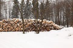 Gestapeld pulphout royalty-vrije stock foto