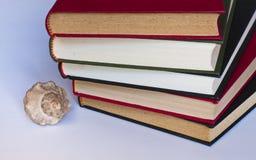 Gestapelde boeken en zeeschelp stock afbeeldingen