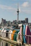 Gestapelde het roeien boten in de jachthaven van Auckland Royalty-vrije Stock Foto's