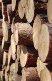 Gestapelde logboeken Stock Afbeelding