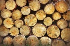 Gestapelde Logboeken Achtergrond van houten raad Houten achtergrond royalty-vrije stock foto