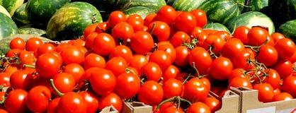 Gestapelde rode tomaten Stock Afbeelding