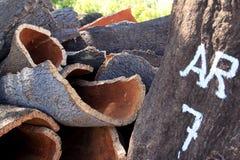 Gestapelte Barke gegen Korkeiche, Alentejo, Portugal Stockbild