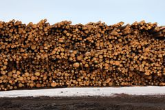 Gestapeltes Bauholz, Bauholz-Tausendstel Stockbilder