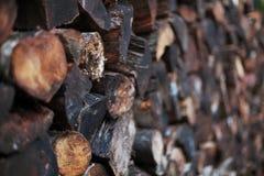 Gestapeltes Mischnetzkabel des nassen Brennholzes stockbilder