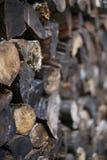 Gestapeltes Mischnetzkabel des nassen und schmutzigen Brennholzes lizenzfreie stockfotos