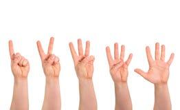 Geste de main de compte d'un à cinq doigts d'isolement Photographie stock libre de droits