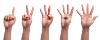Geste de main de compte d'un à cinq doigts d'isolement Photo stock