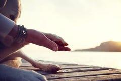Geste de main de la patte et de l'homme du chien de l'amitié Image libre de droits