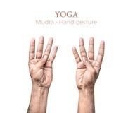 Geste de main de Mudra Images libres de droits