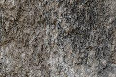 Gesteinsschichtbarke für Beschaffenheitshintergrund lizenzfreie stockbilder