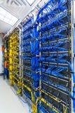 Gestell mit generischen Ethernet-Kabeln Stockfotografie