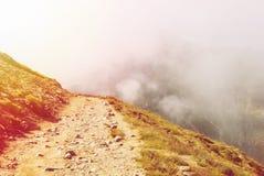 Gestemde kronkelige weg die in de Carpatian-bergen dalen en Royalty-vrije Stock Afbeelding