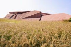 Gestenigd dak van de moderne bouw in varkenshaar-gras op de zonnige winter royalty-vrije stock afbeelding