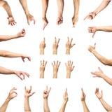 Gestes de main caucasiens masculins multiples d'isolement au-dessus du Ba blanc Image stock