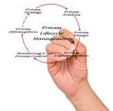 Gestión de proceso del ciclo vital Imagenes de archivo