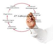 Gestión del ciclo vital de las TIC Foto de archivo libre de regalías