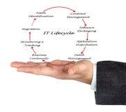 Gestión del ciclo vital de las TIC Imagen de archivo