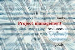 Gestión del proyecto Imagen de archivo libre de regalías